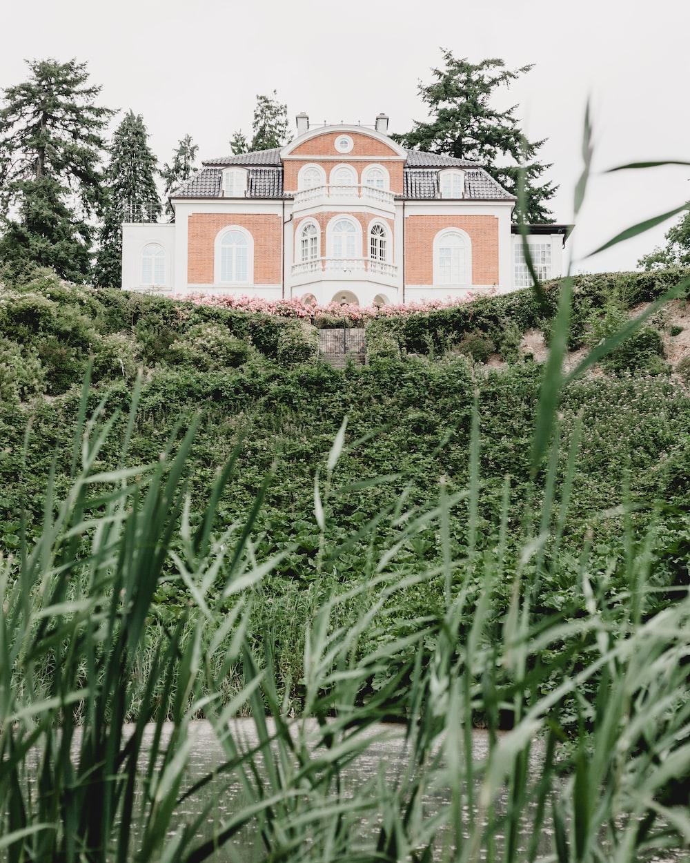 white and orange house beside garden