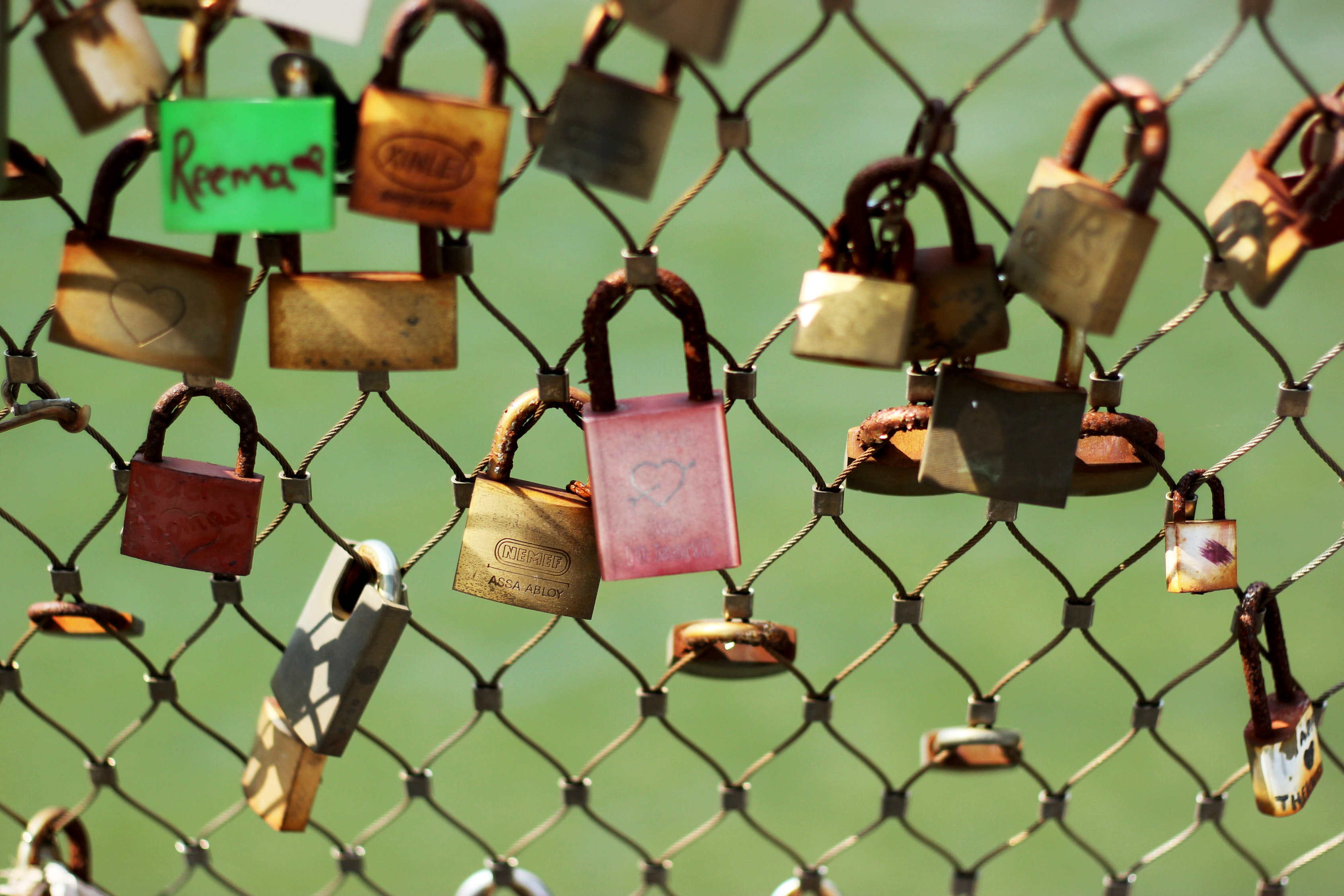 assorted-color padlock lot on fence