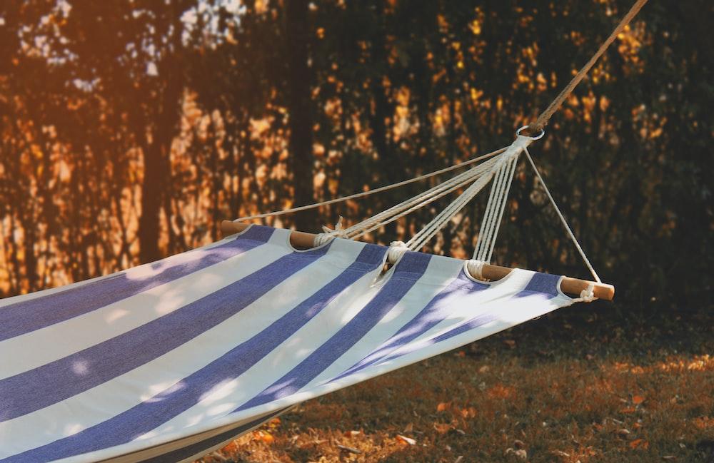 photo of hammock outdoor