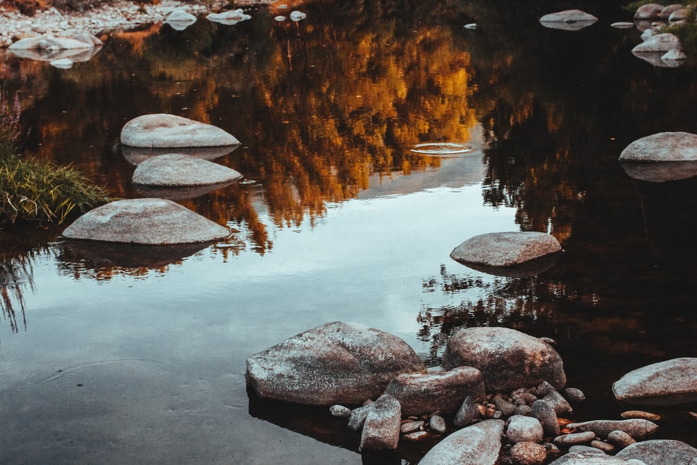calm body of water with stones