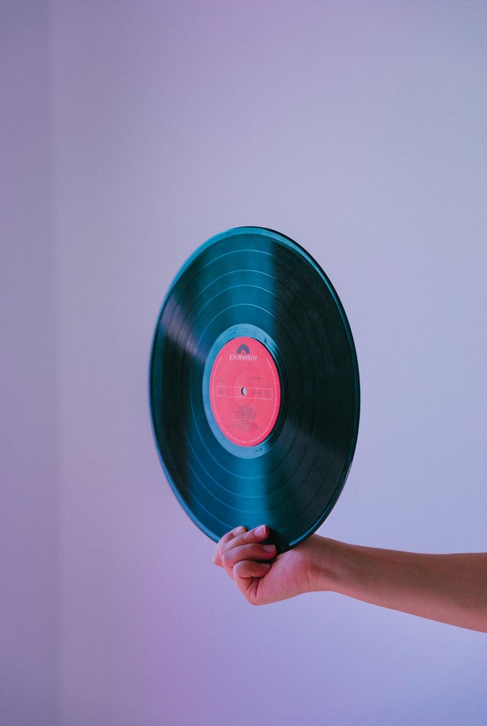 person holding vinyl record