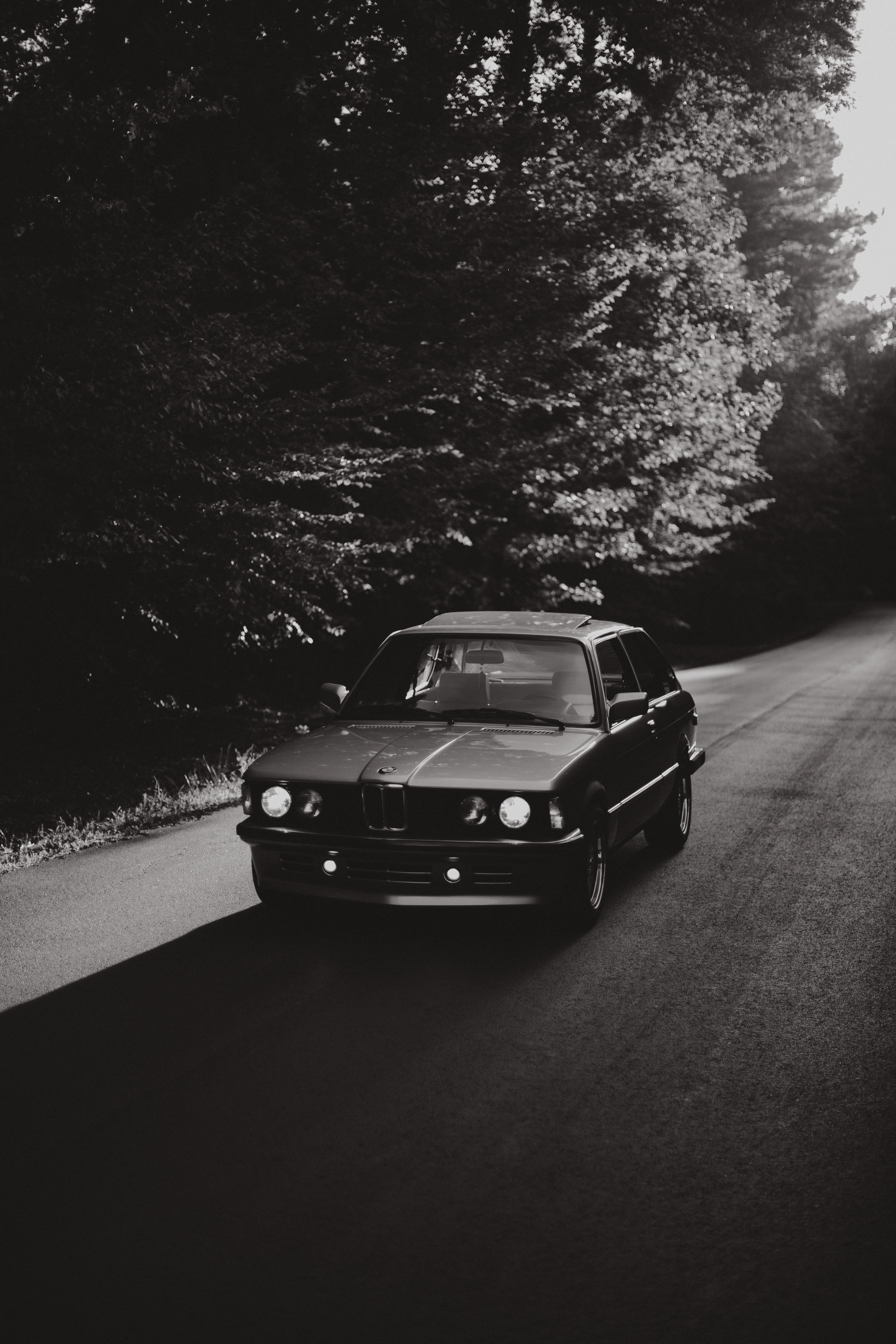 grayscale photo of BMW coupe near black trees