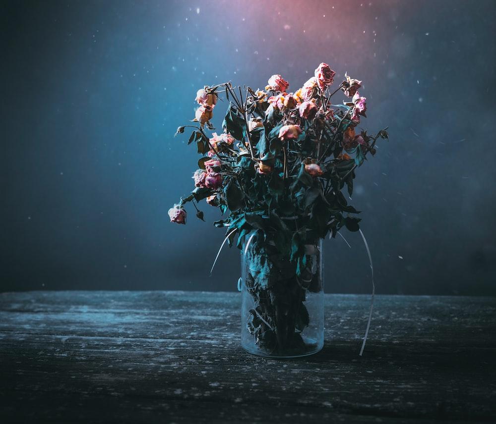 Dead Flowers Photo By Elijah Odonnell Elijahsad On Unsplash