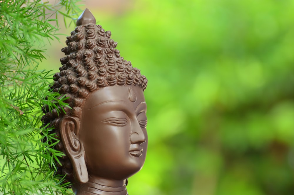 buddha pictures images hq download free photos on unsplash