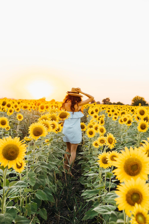 woman standing between sunflower field during daytime