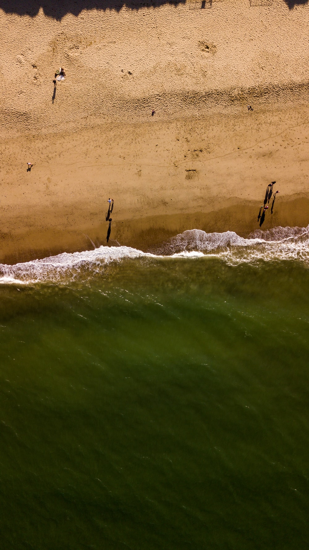 aerial view photography of shoreline