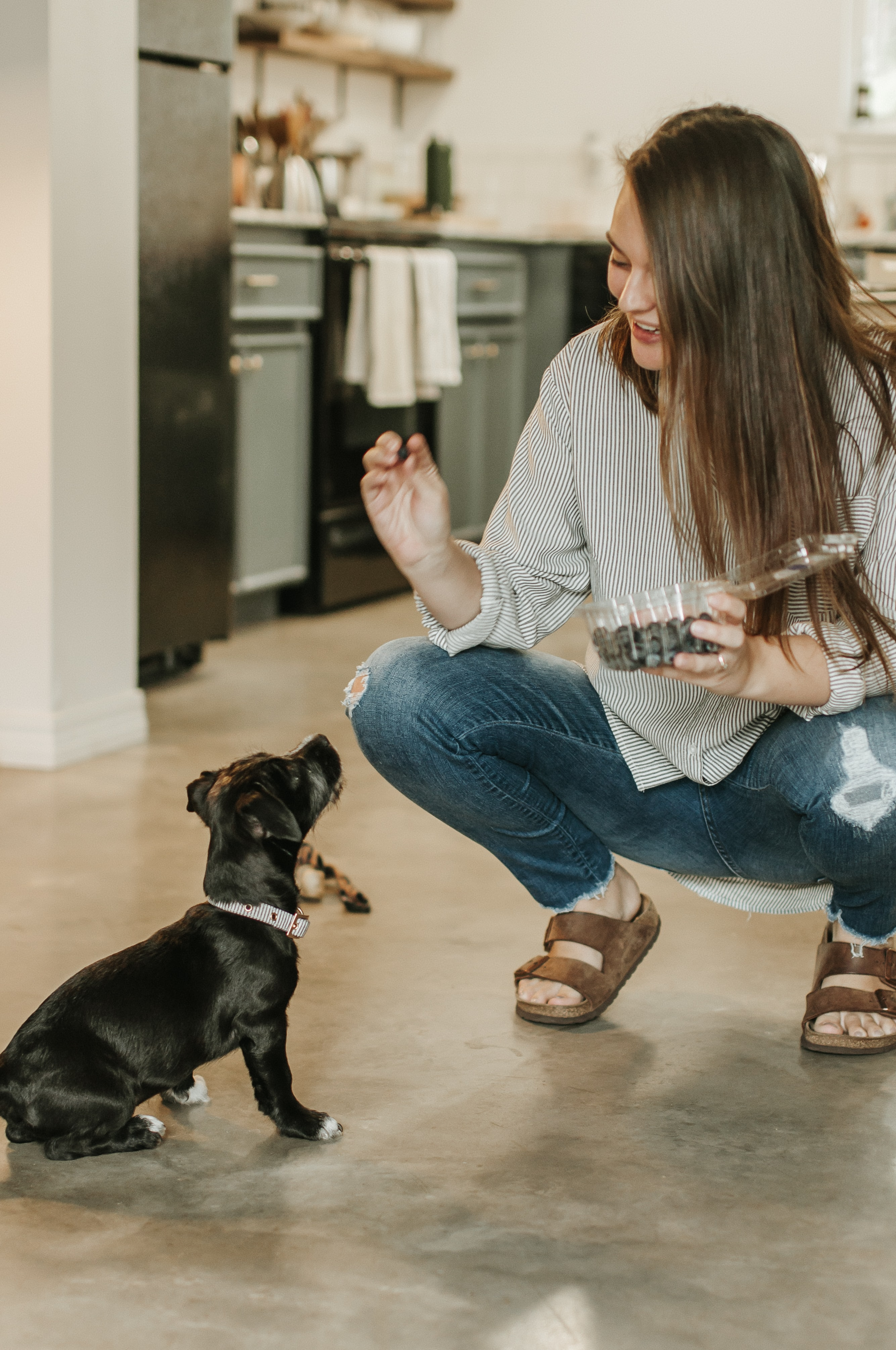 woman feeding puppy with treats