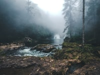 landscape photography of river between trees