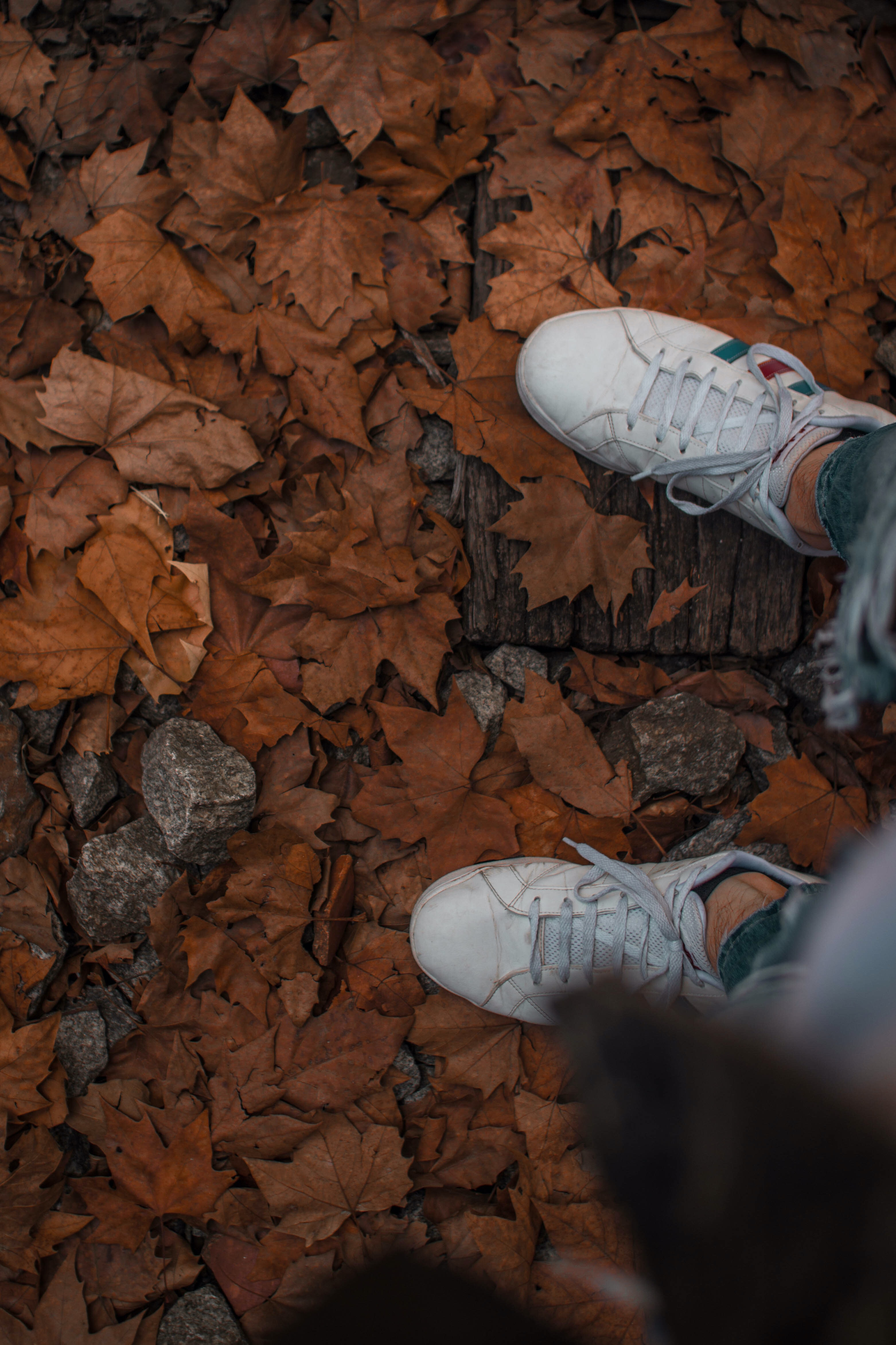 high-angle photography of person wearing white sneakers