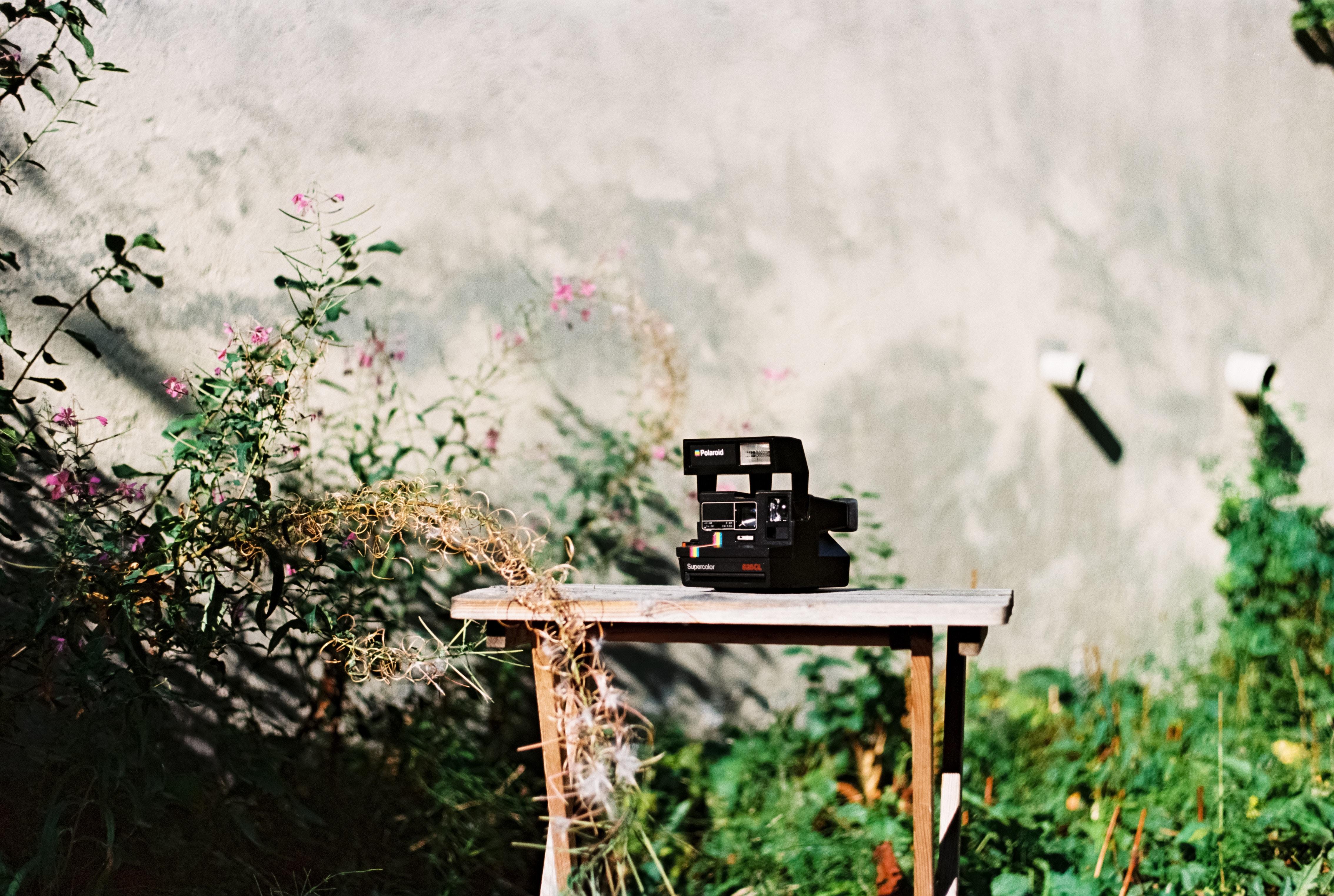 black land camera on brown wooden bench