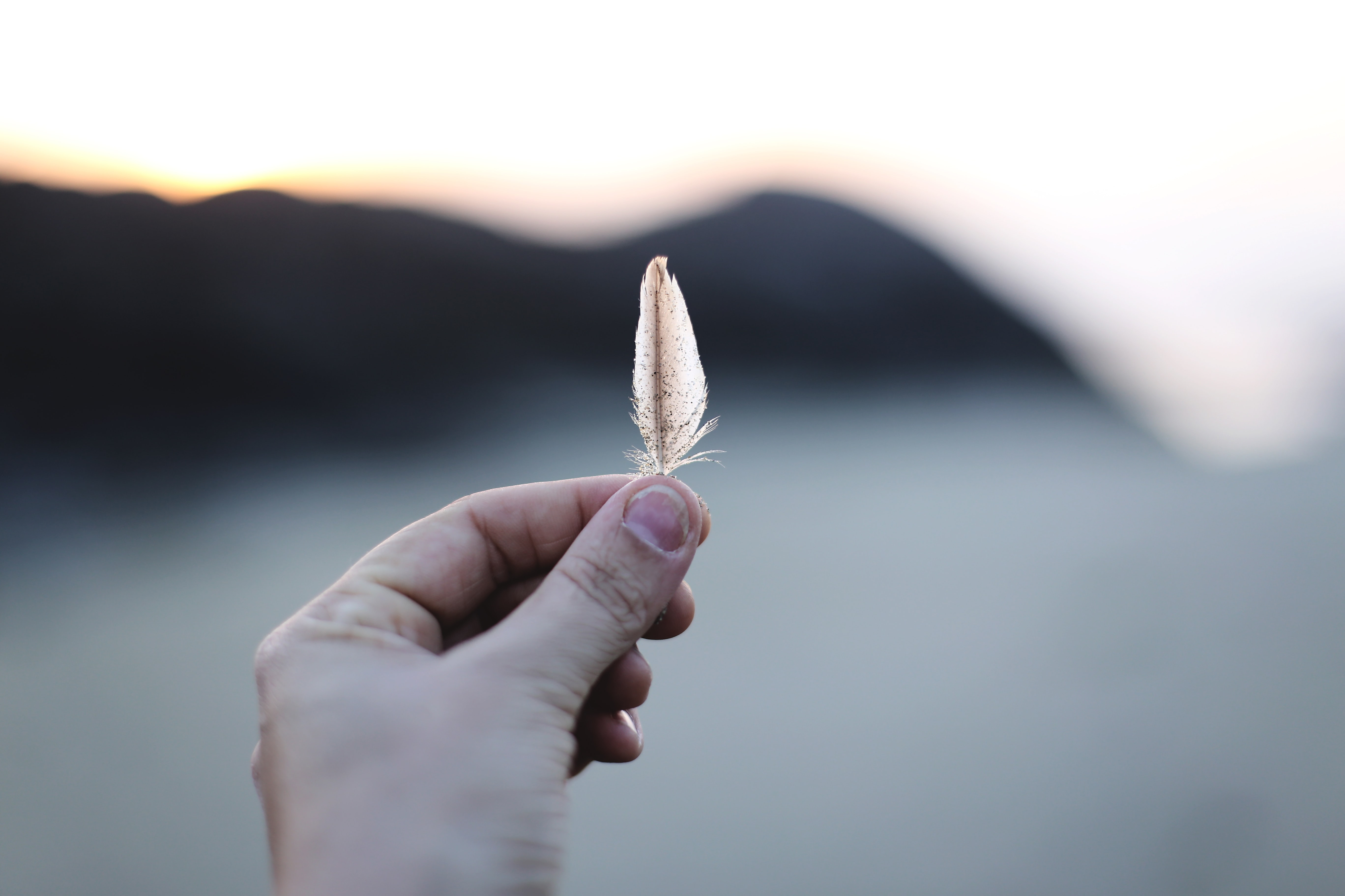 selective focus of person holding feather