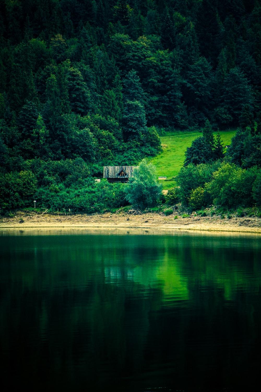 gray house on grass field near body of water