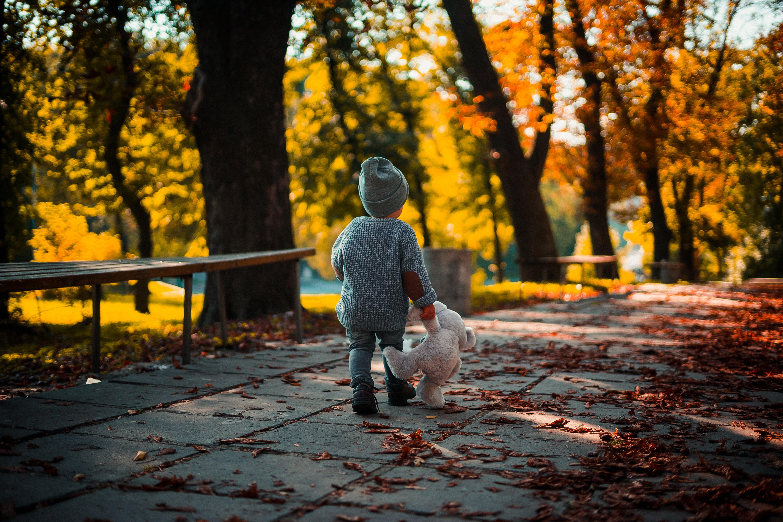 toddler walking and holding bear plush toy