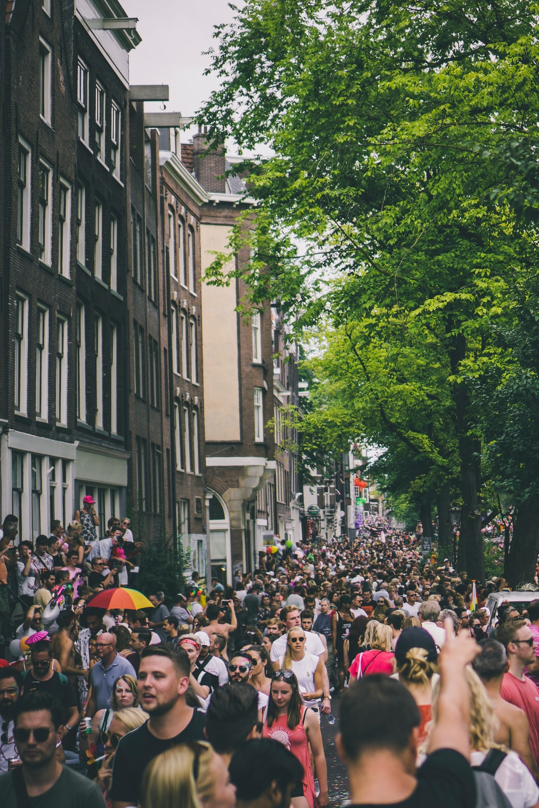 crowd of <b>people</b> walking the streets during daytime photo – Free ...