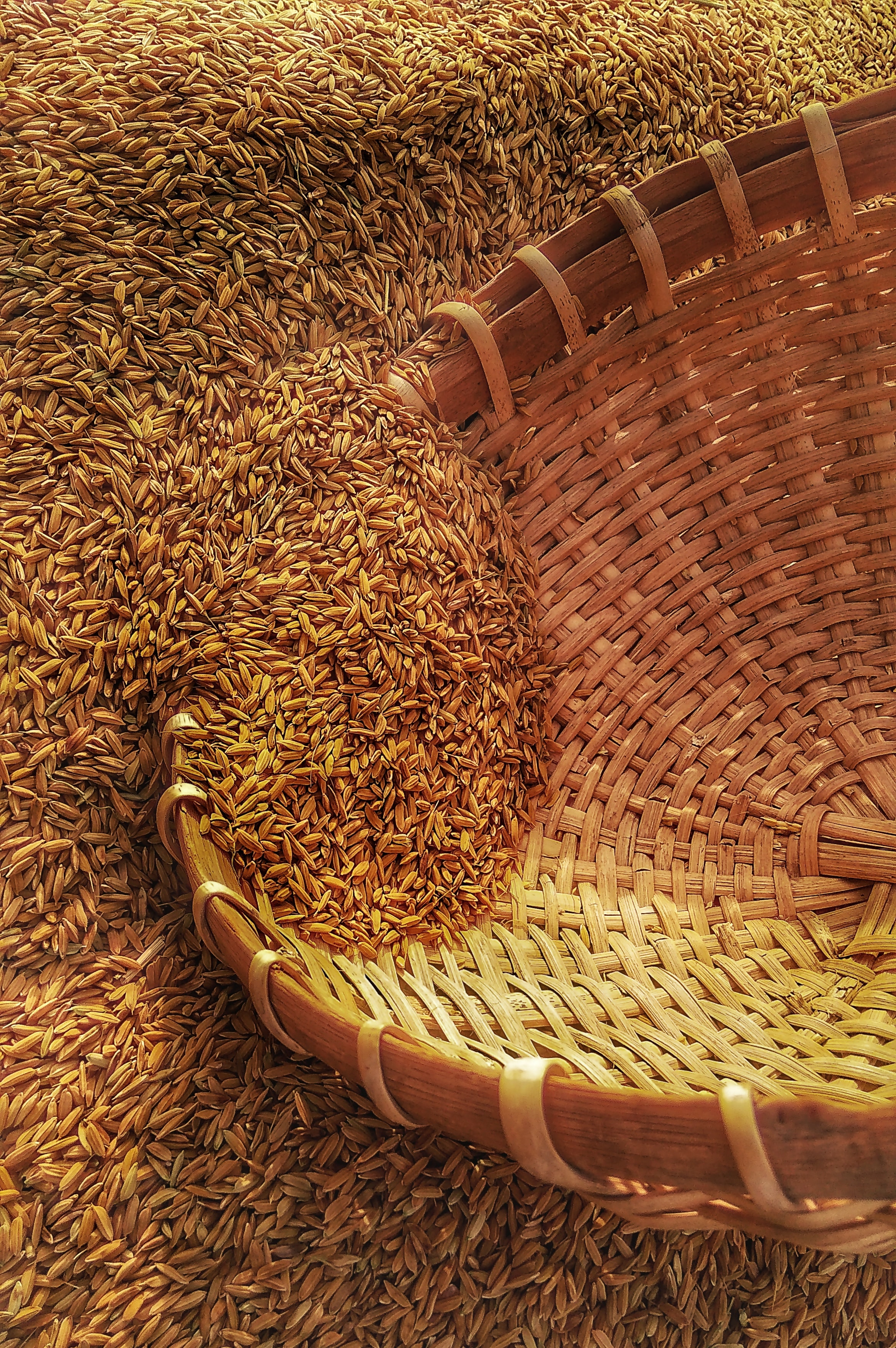 wicker basket on rice grains