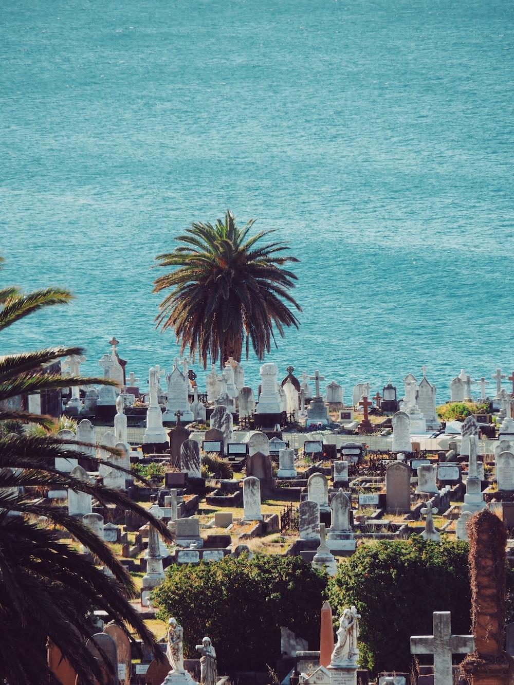 birds eye view of graveyard near body of water