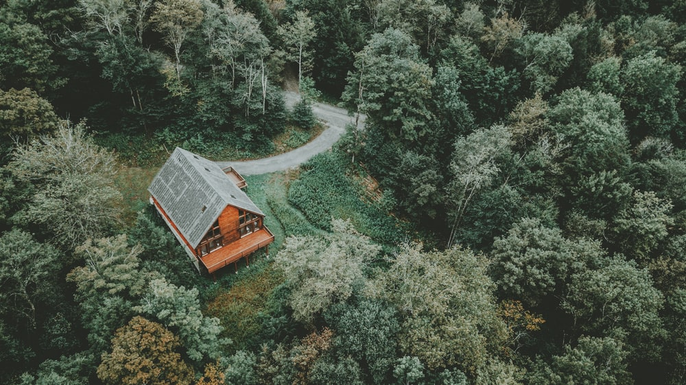 aerial photography of orange house in middle of forest