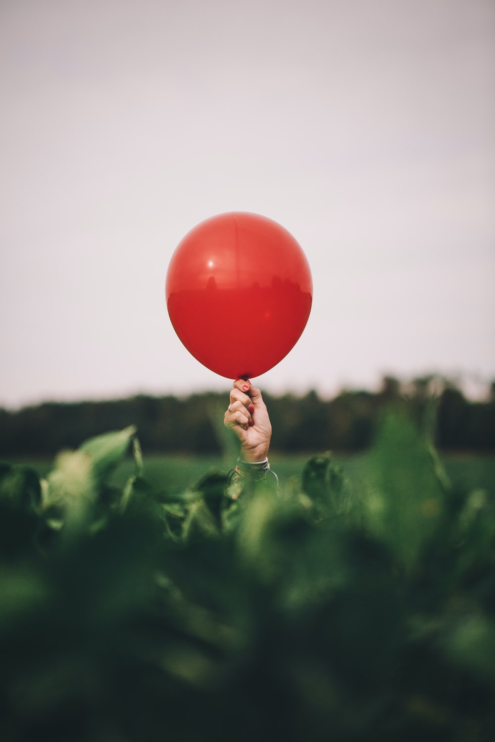 person holding red balloon