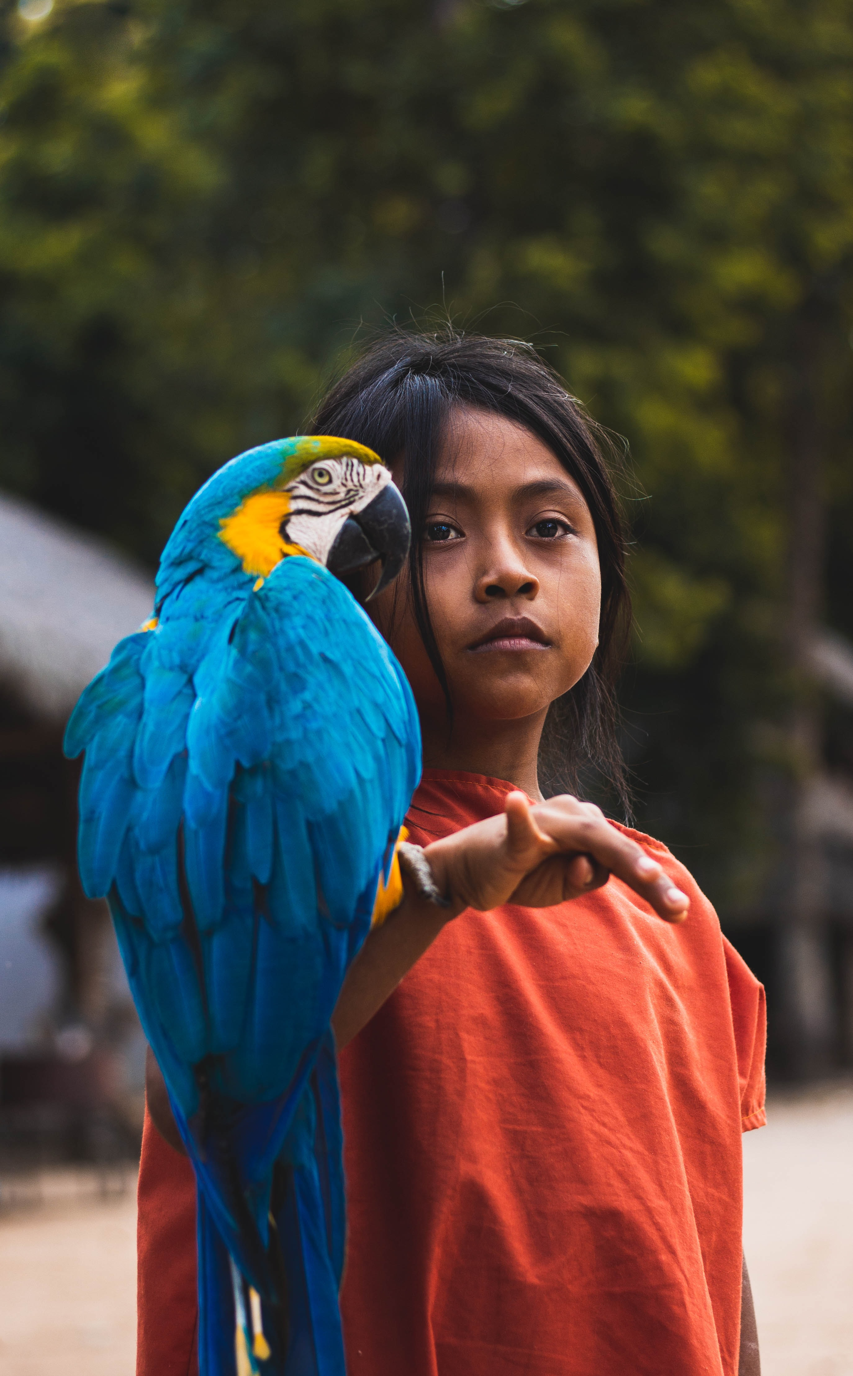 shallow focus photography of parrot and girl