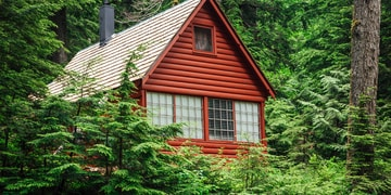 cabin surrounded by trees