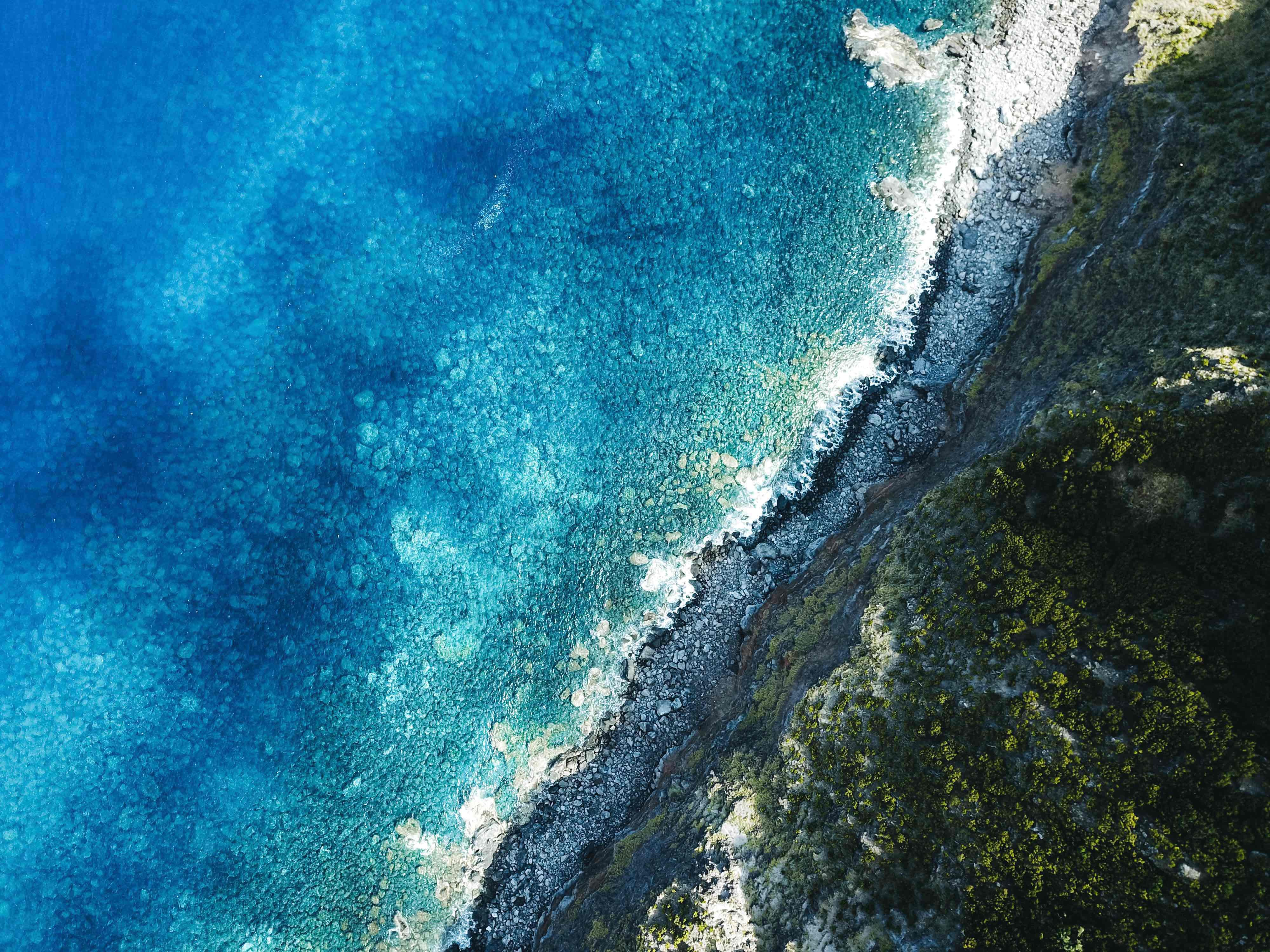 aerial view of seashore during daytime