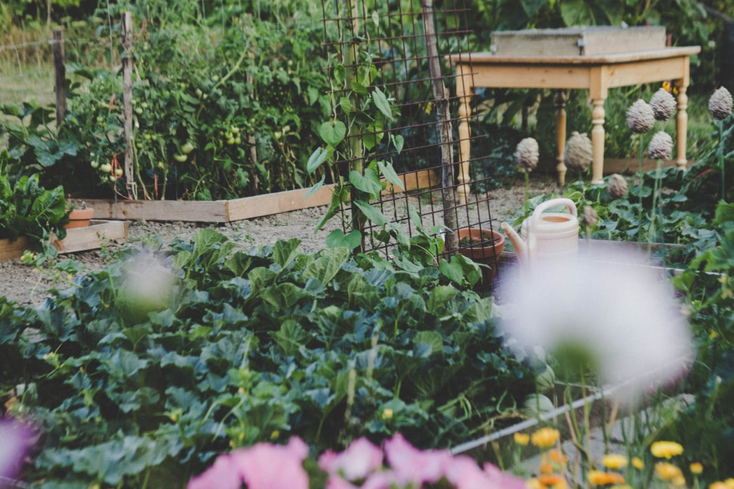 Circular Vegetable Garden Design | 5 Simple Vegetable Garden Design Ideas Perfect For All Seasons