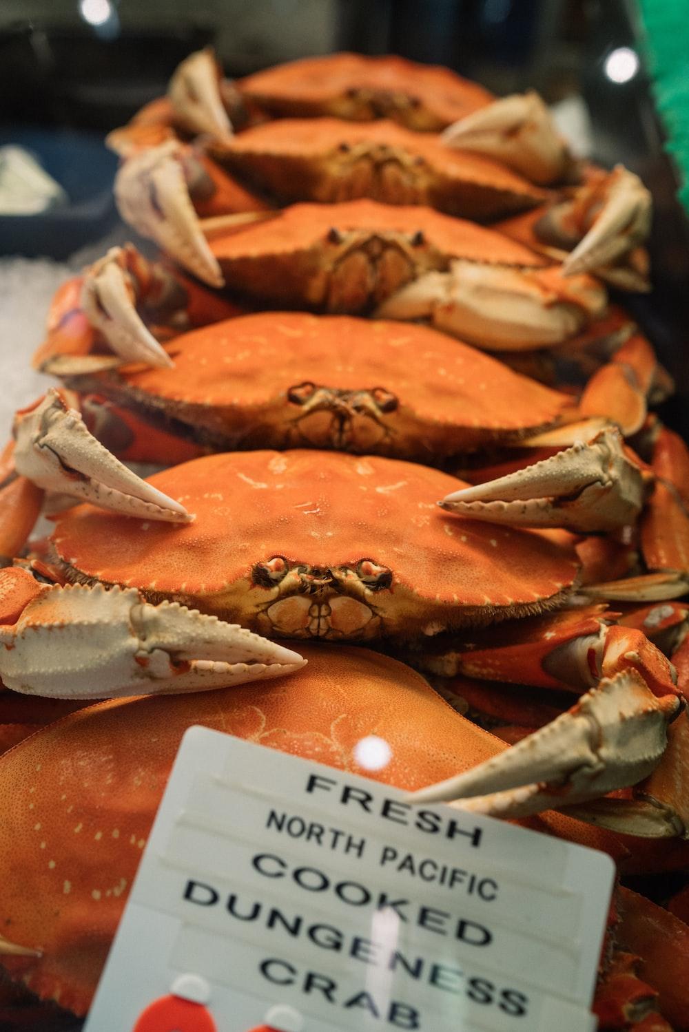 displayed fresh crabs