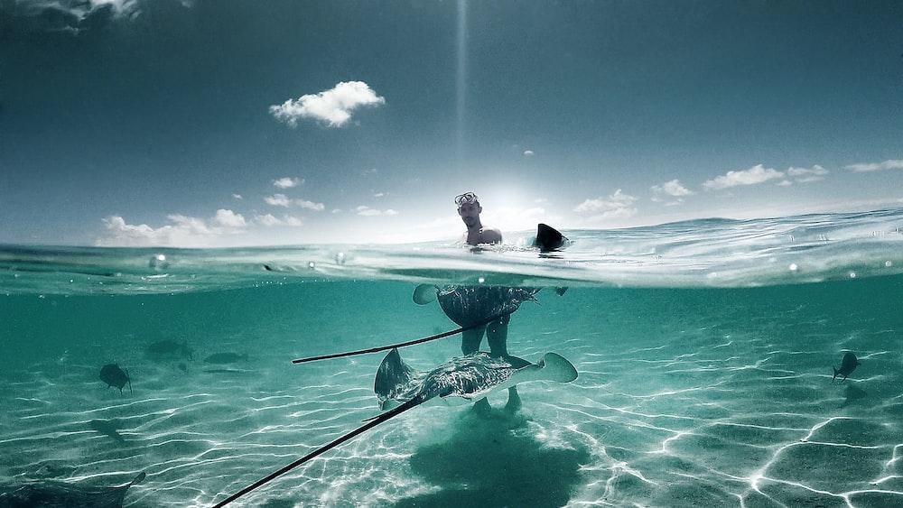 man in ocean under blue sky at daytime