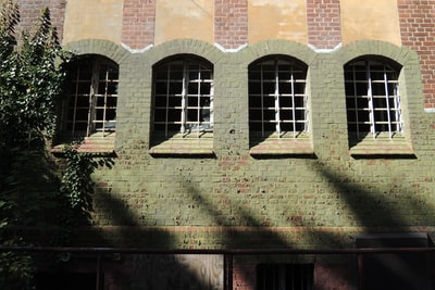 Some windows in an old lunatic asylum