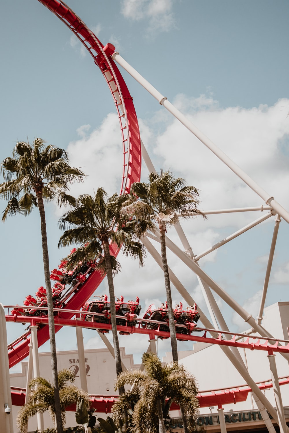 roller coaster near palm trees
