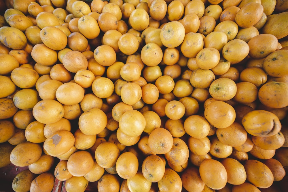 persimmon lot