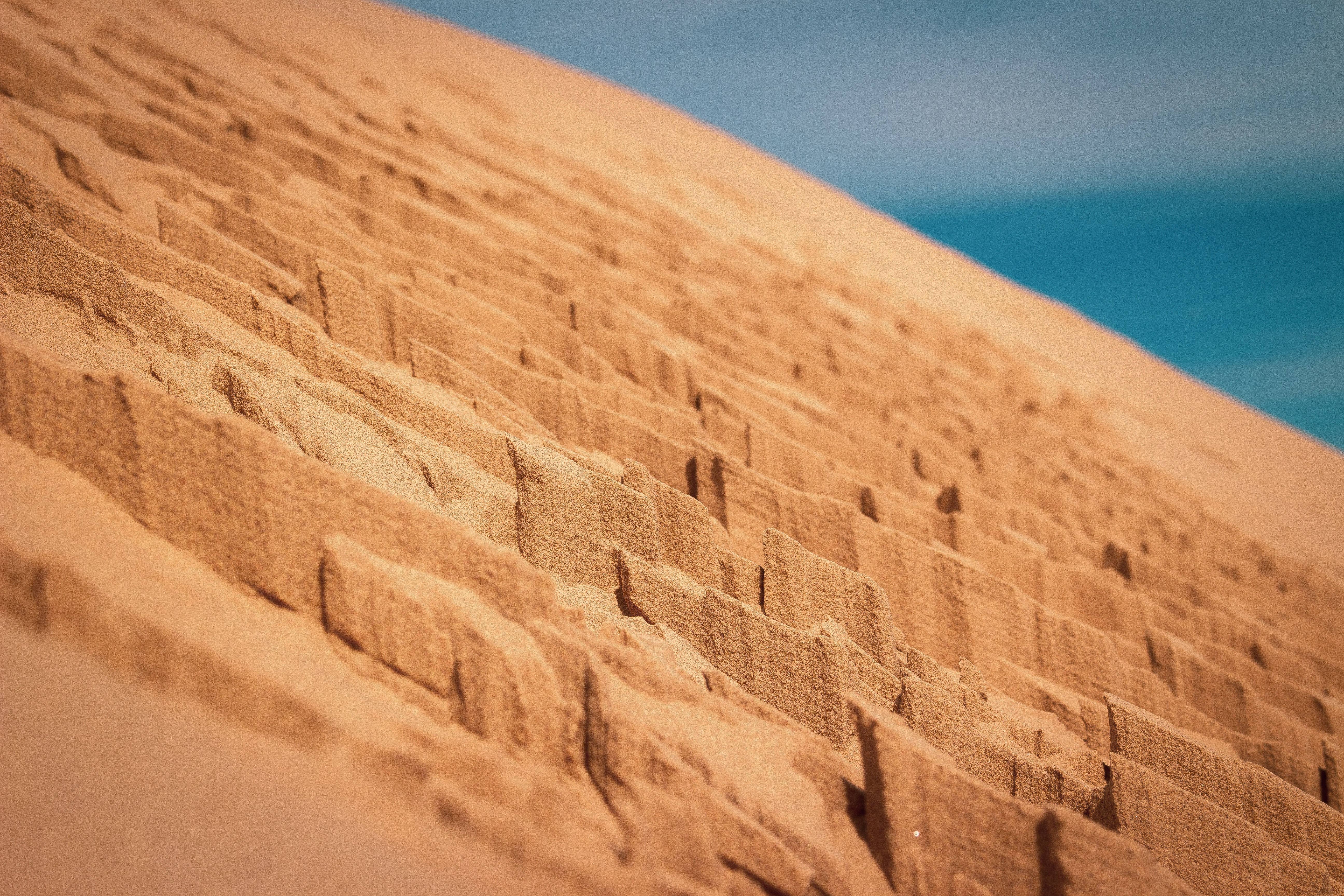 selective-focus photography of brown sand