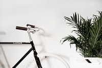 white road bike beside green plants