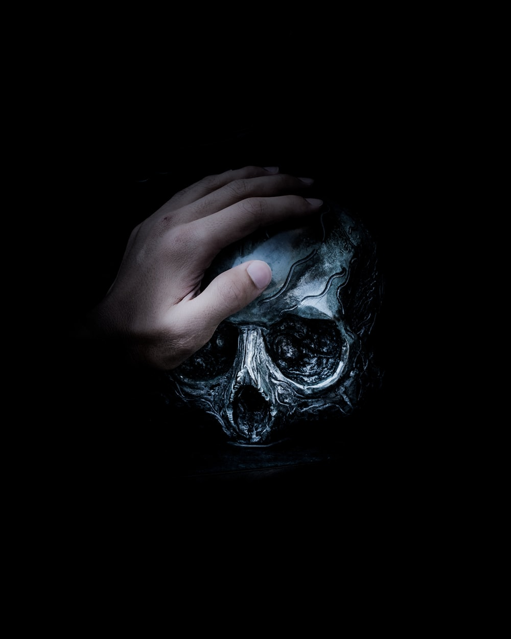 person holding gray skull illustration