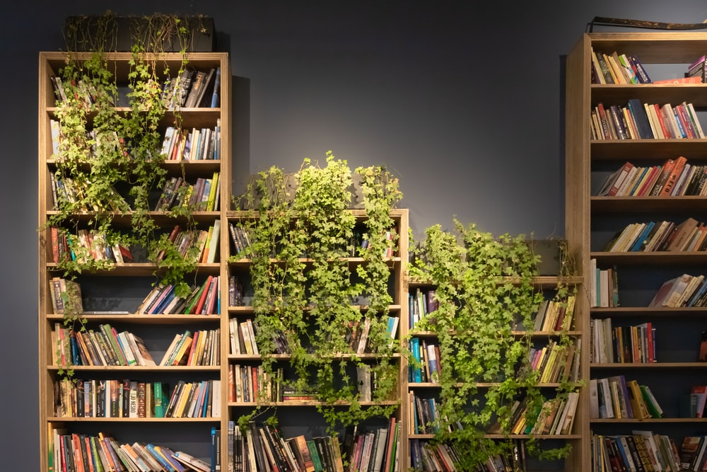 four brown wooden bookshelves with books