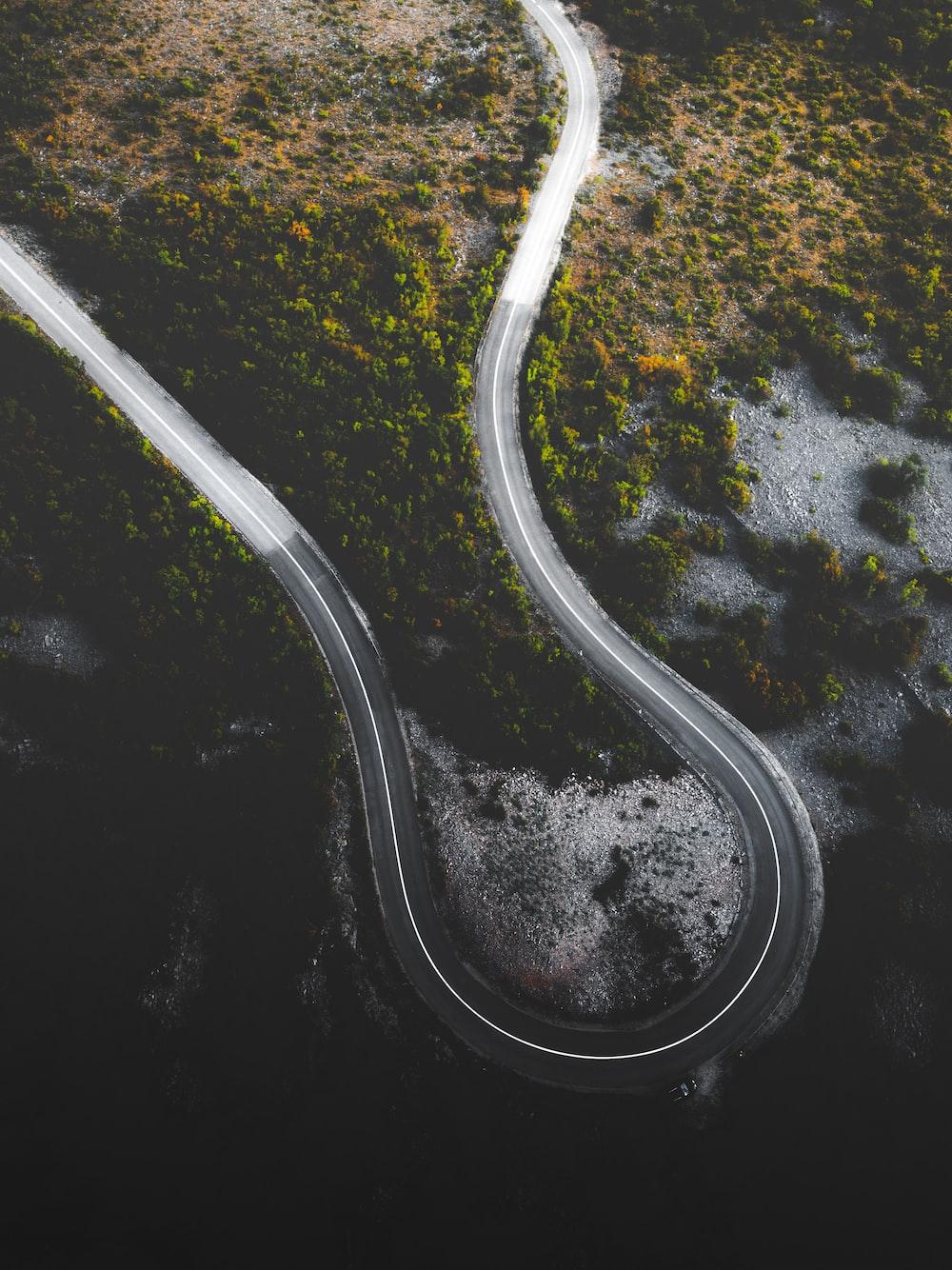 white line on asphalt road