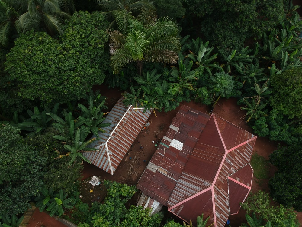 aerial photo of house surrounded with trees