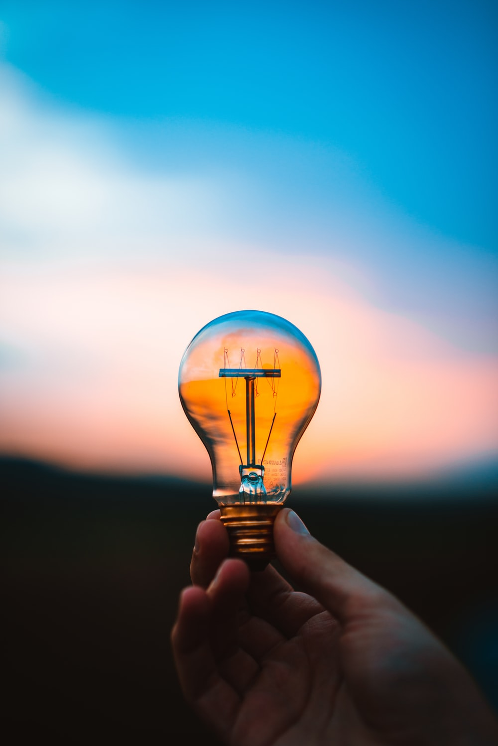 person holding bulb