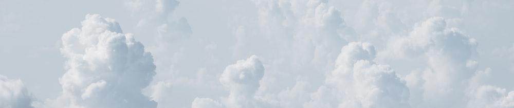 SEADEX header image
