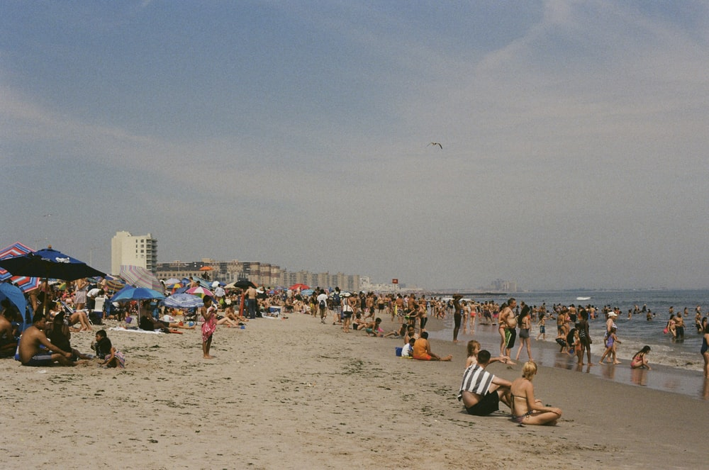 people on beach at daytime