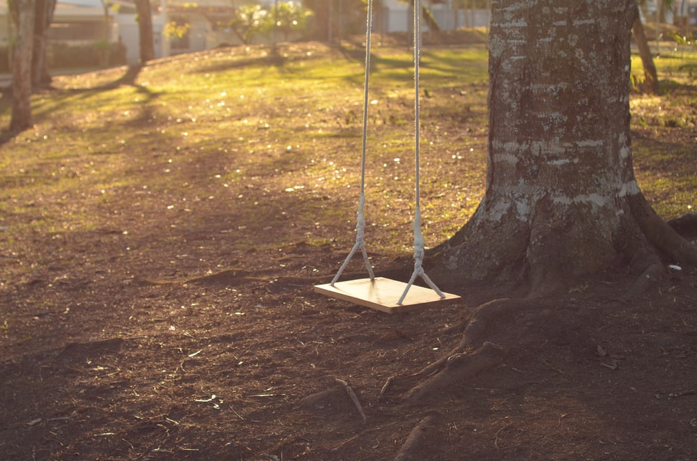 brown wooden swing under tree at daytime