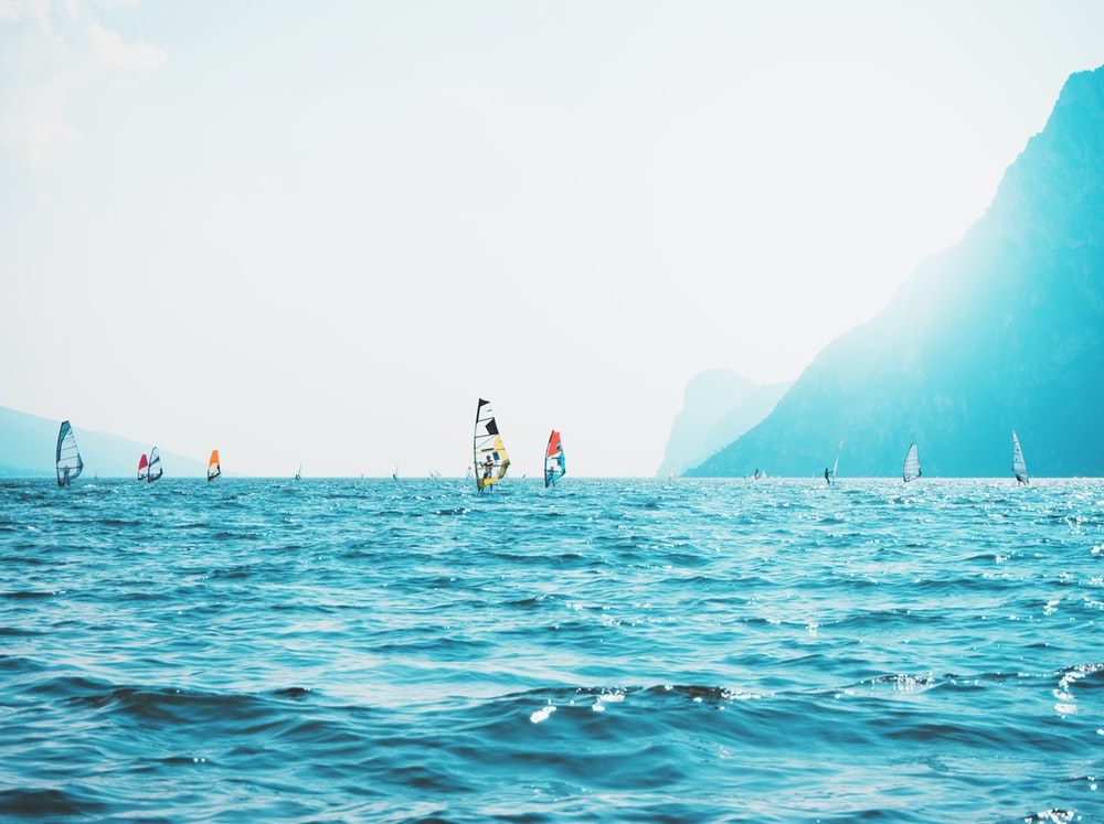 wind surfers on body of water