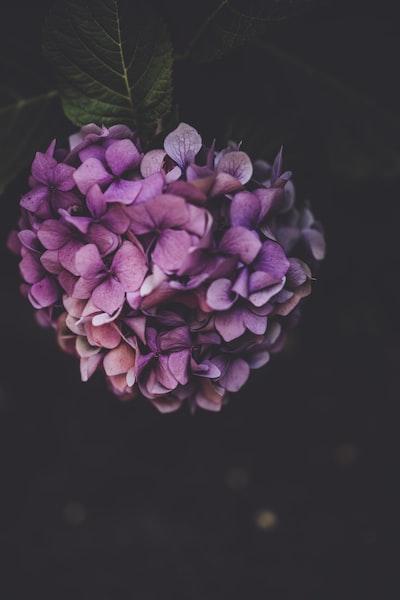 3937. Virágok
