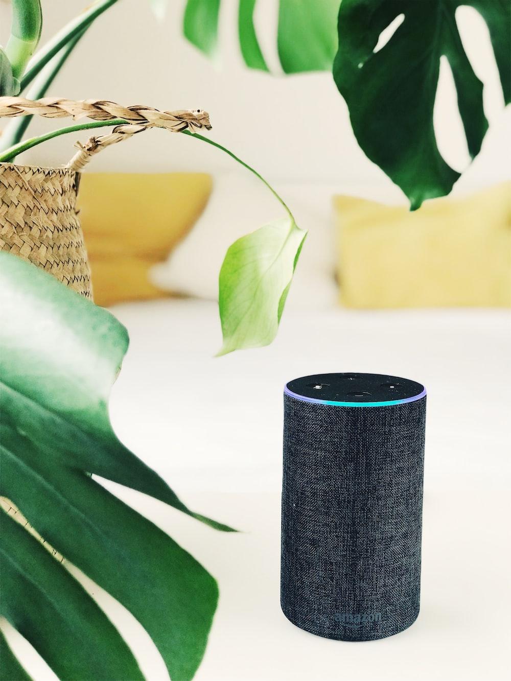 2nd. gen black Amazon Echo speaker on white panel