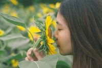 woman sniffing sunflower