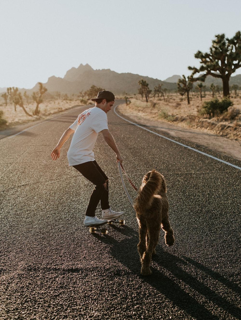 man in skateboard walking dog during daytime