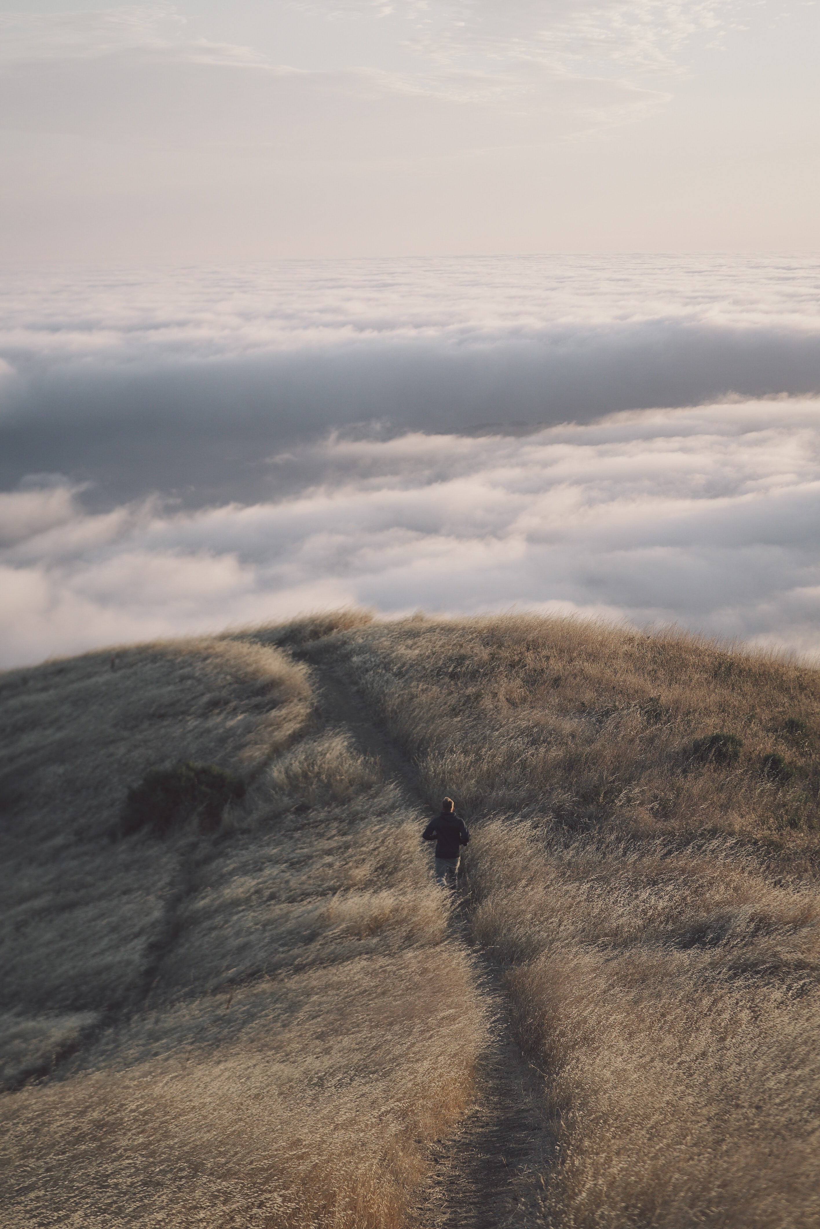 person walking on top of the mountain with the view of white sea of clouds