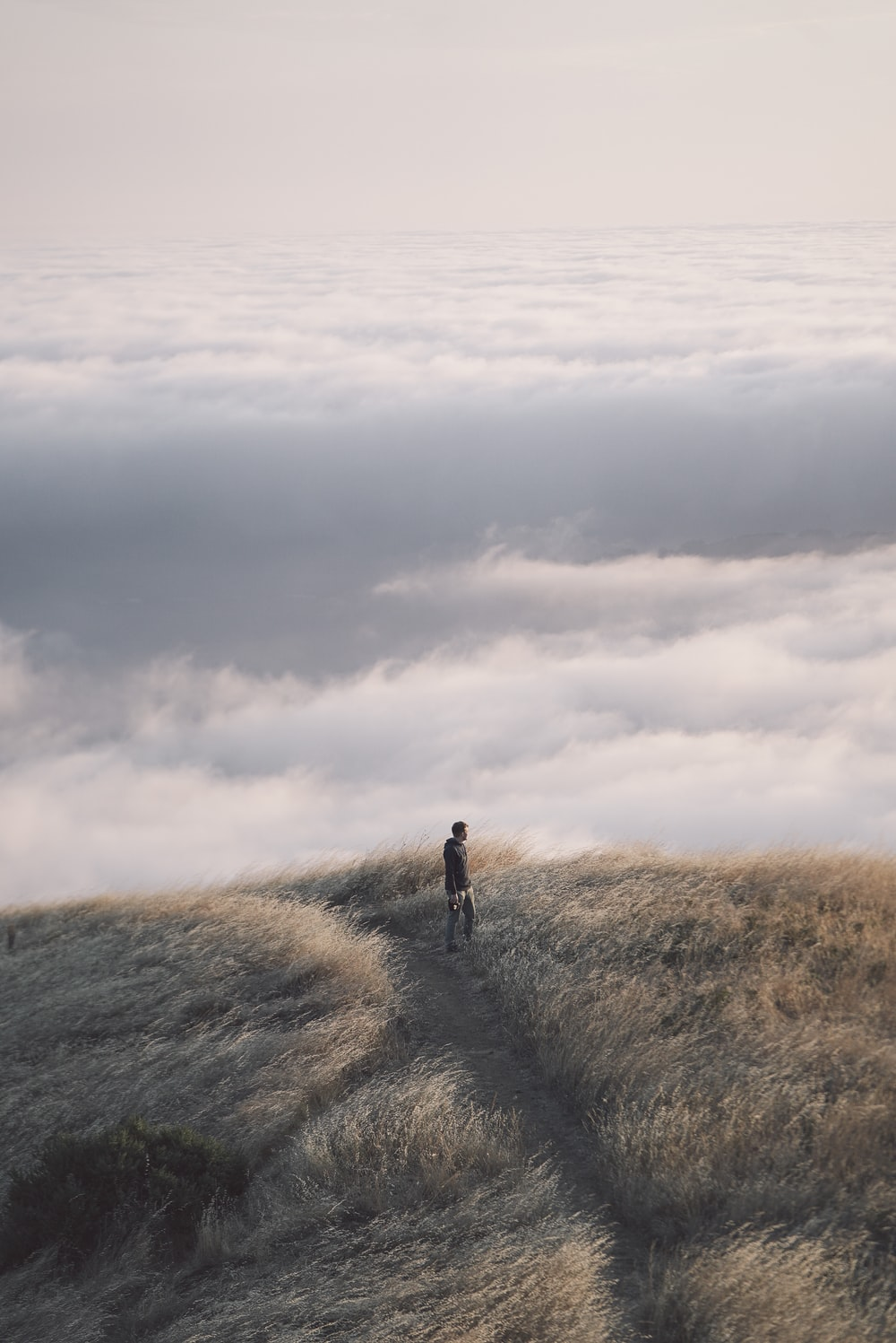 person near sea of clouds