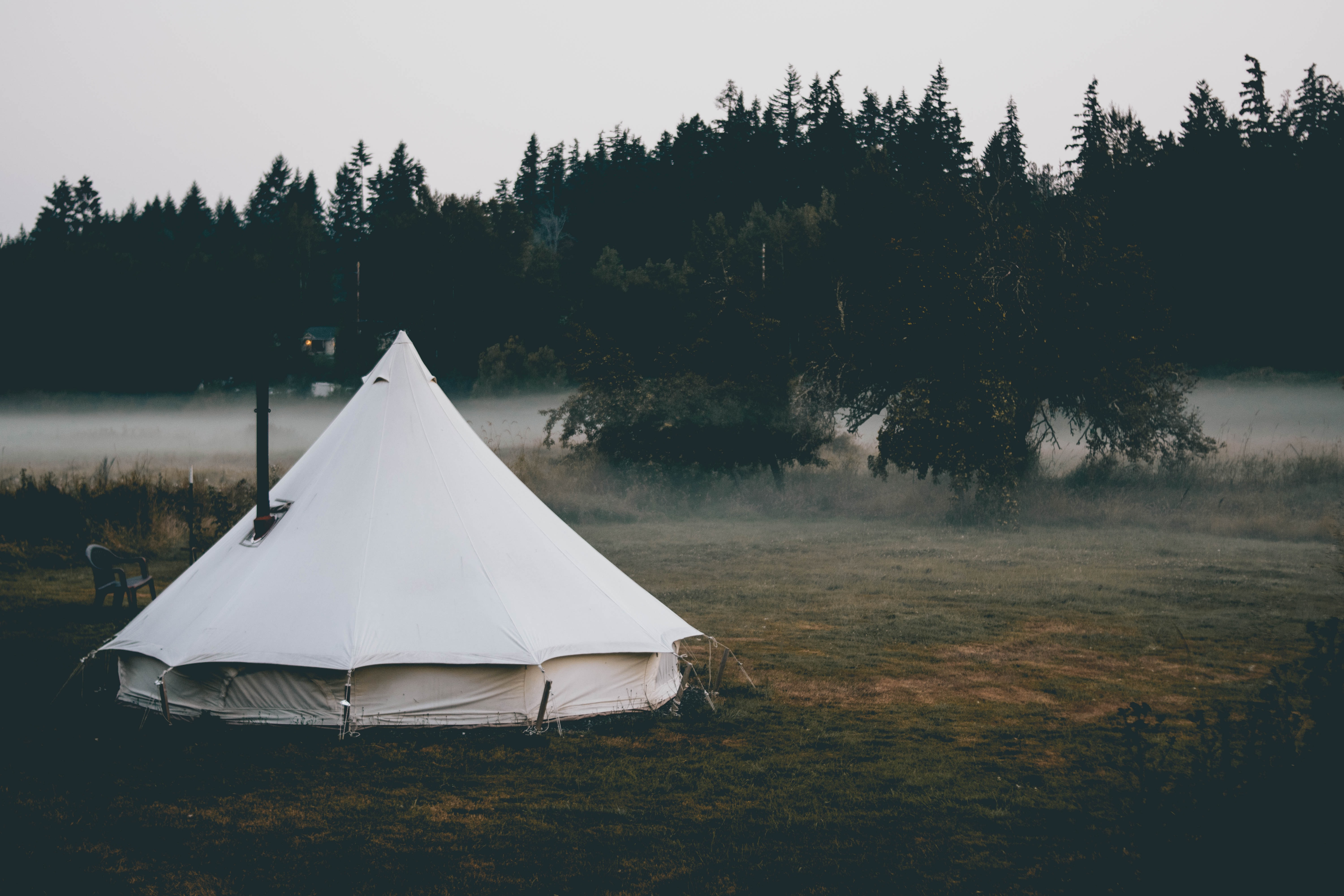 white tent near trees during day