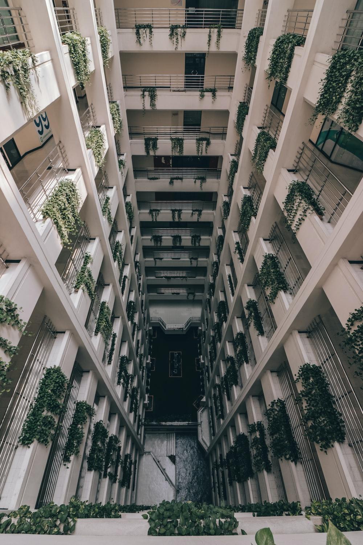 photograph of concrete building